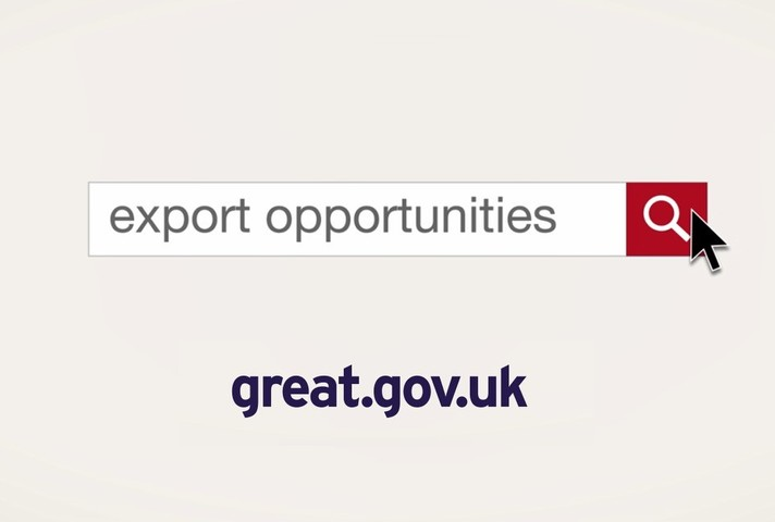 An infographic showing the export opportunities website.
