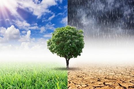 GAD comment - Climate change