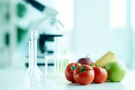 Vegetables in a laboratory