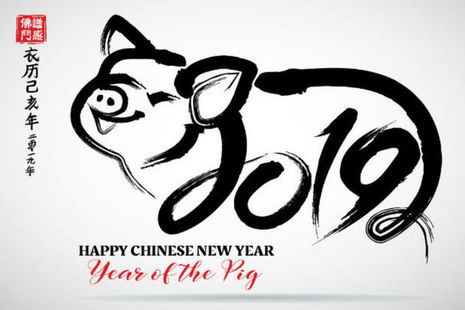 Happy New Year of the Pig
