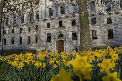 HM Treasury building in the spring (with daffodils)