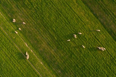 An aerial view of a farm.