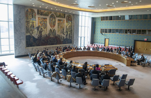 UN Security Council (UN Photo)