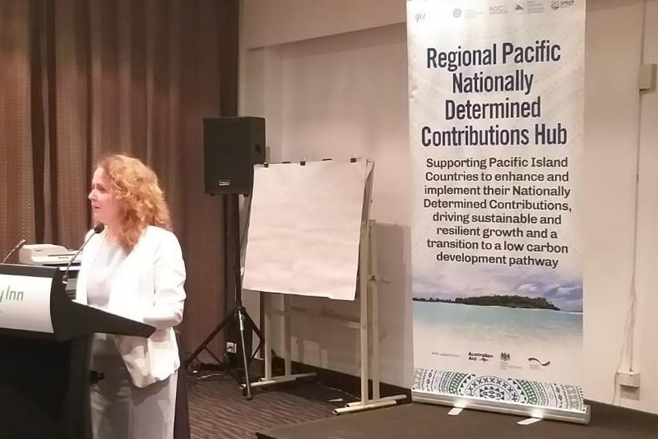 Melanie Hopkins Speaking at the NDC Steering Committee Meeting