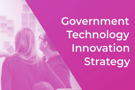 Government Innovation Strategy