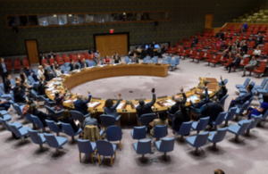 UN Security Council unanimously adopts Resolution 2475 on Persons with Disabilities in Armed Conflict