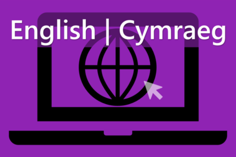 Apply for basic checks online, in Welsh
