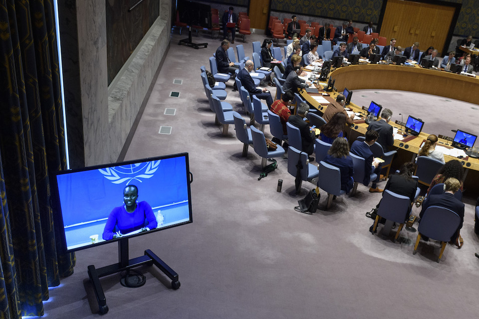 Security Council on South Sudan