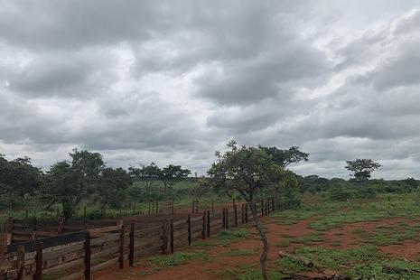 Angola farmland