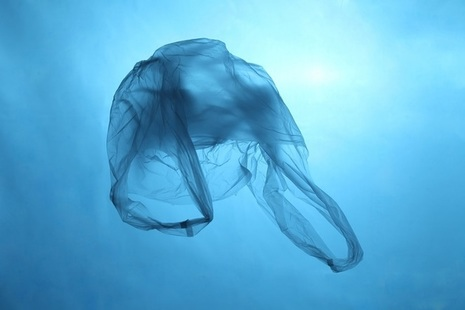 Plastic bag in ocean