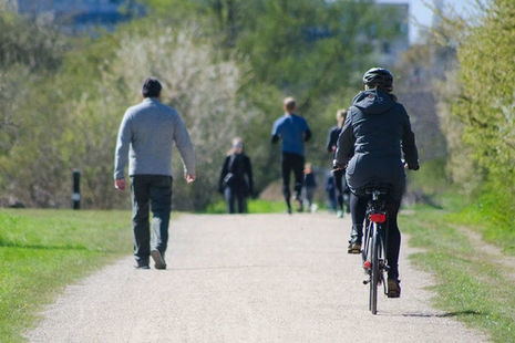 Cyclist, walkers and runners on wide path in a park