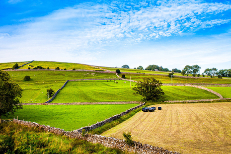 Fields divided by stone walls in the English countryside