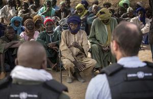 Mali mandate renewal