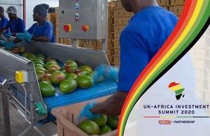 Workers at Blue Skies, a UK company in Ghana supplying fresh-cut fruit