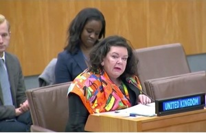 Amb. Karen Pierce at the NGO Committee