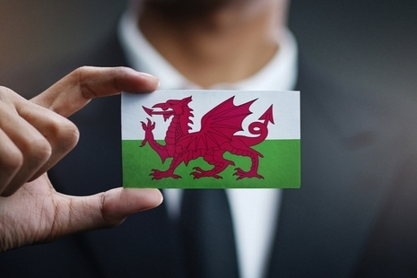 Man wearing a suit holding a small Welsh flag.