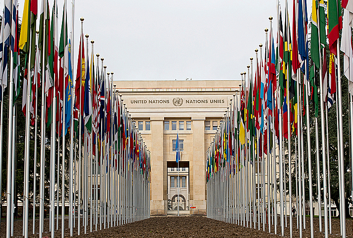 Parallel flags of all UN members going down towards the UN flag in the middle, and the building, Palais Des Nations