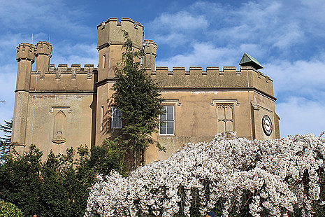 A tower with battlements behind a blossom-covered tree