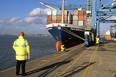 Container ship docked at a port.