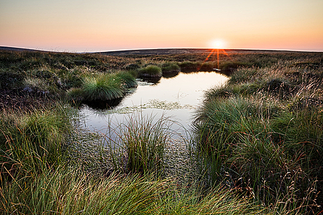 Image of moorlands in the Pennines with pink sky in background