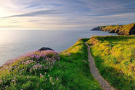 Coastal view out to sea
