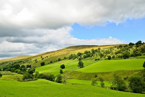 Rolling hills with dotted woodlands