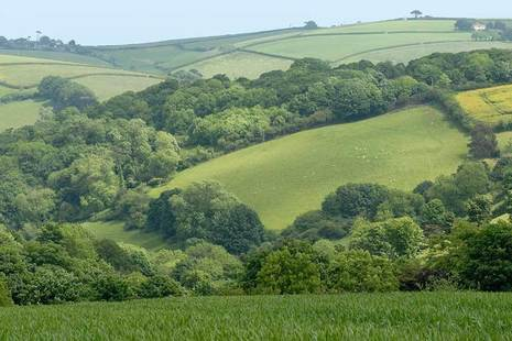 Rolling hills and hedgerows