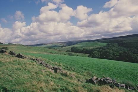 Green fields. Credit: Natural England.