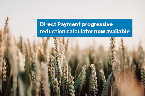 Direct Payment progressive reduction calculator now available