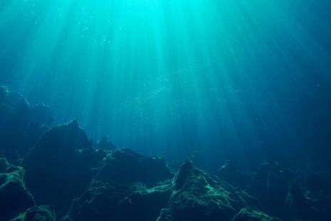 Underwater in the ocean