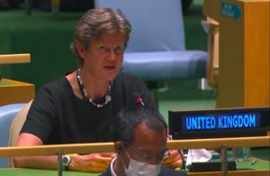 Ambassador Barbara Woodward at the General Assembly