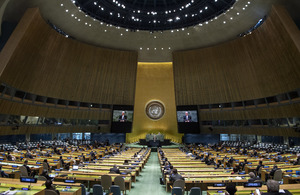 UN General Assembly (UN Photo)