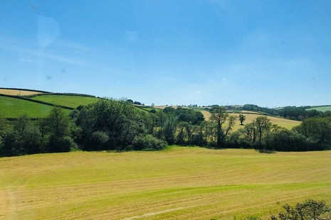 A patchwork of green fields with a line of trees through the middle