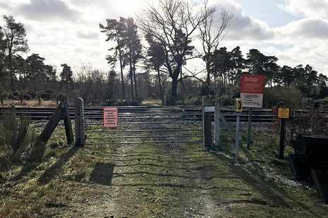 Forestry user worked crossing (image courtesy of Network Rail)