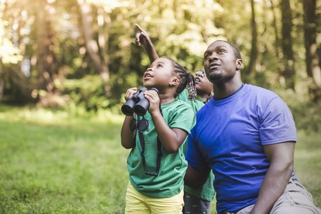 A child holds a pair of binoculars and is looking at the woodland around her with an older man and another young boy behind her. They are looking at something up high.