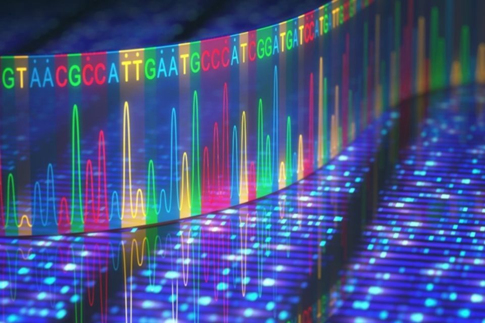 Image of DNA sequencing