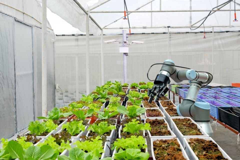 Image showing robotic arm for 'smart' farming.