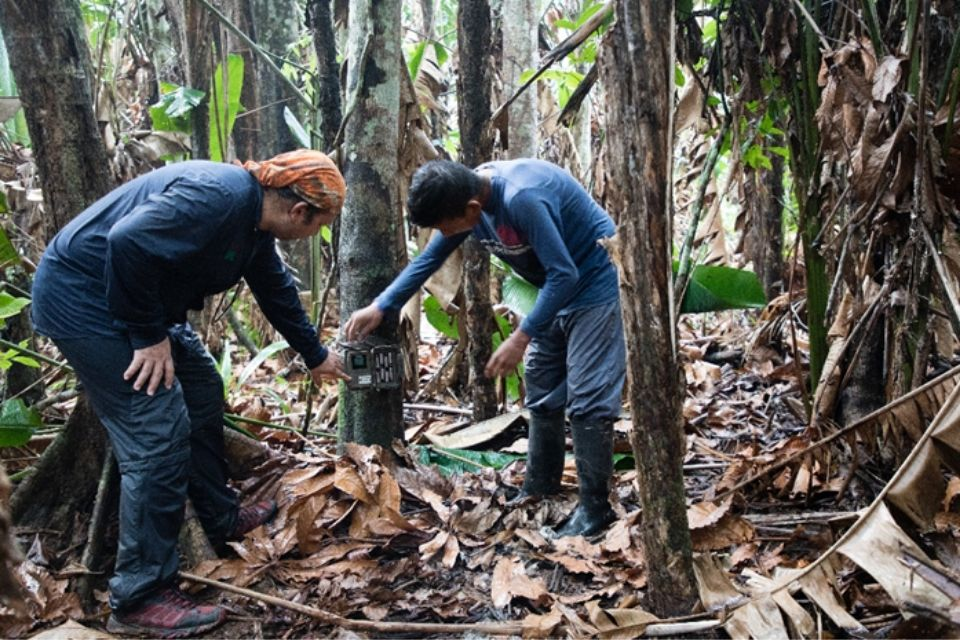 Image of 2 researchers in a Colombian forest with measuring equipment.