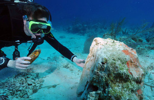Turks and Caicos Islands' governor dives to inspect reef damage