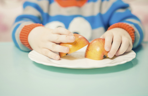 Close-up of a toddler's hands holding pieces of apple