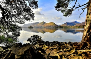 A scenic image of a lake in the Lake District in Cumbria. With twisted roots in the foreground belonging to a tree, and a calm, still waterfront of the lake in the background with dramatic fells looming behind,