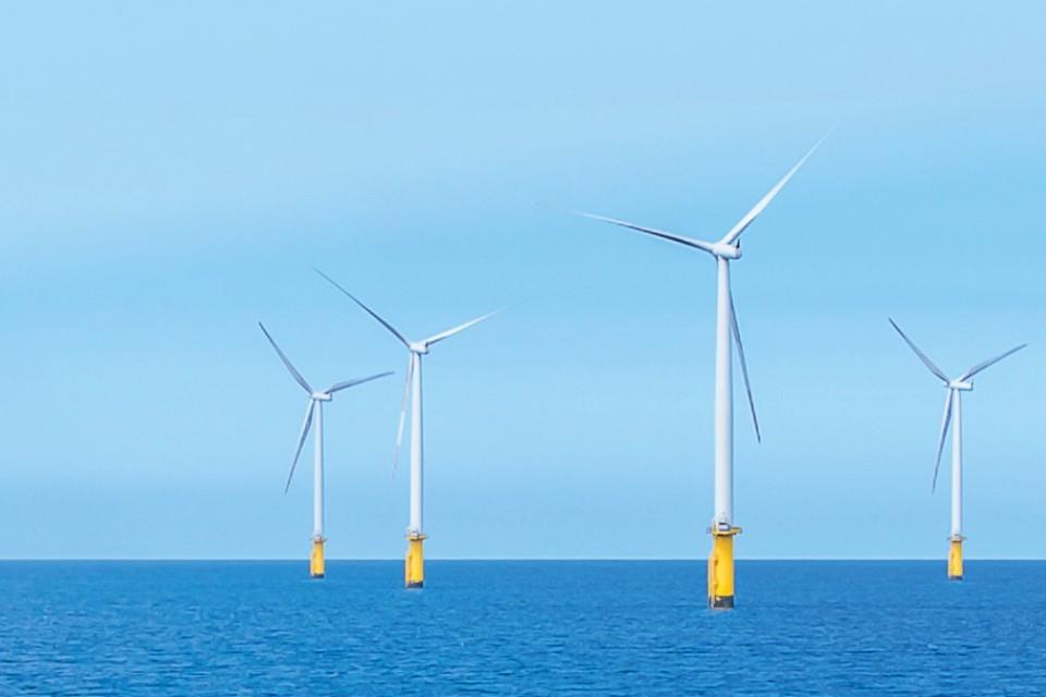 Wind farm in sunlight