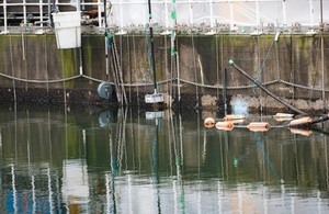 A pond on the Sellafield site
