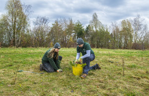 Image of two people planting a tree in a field