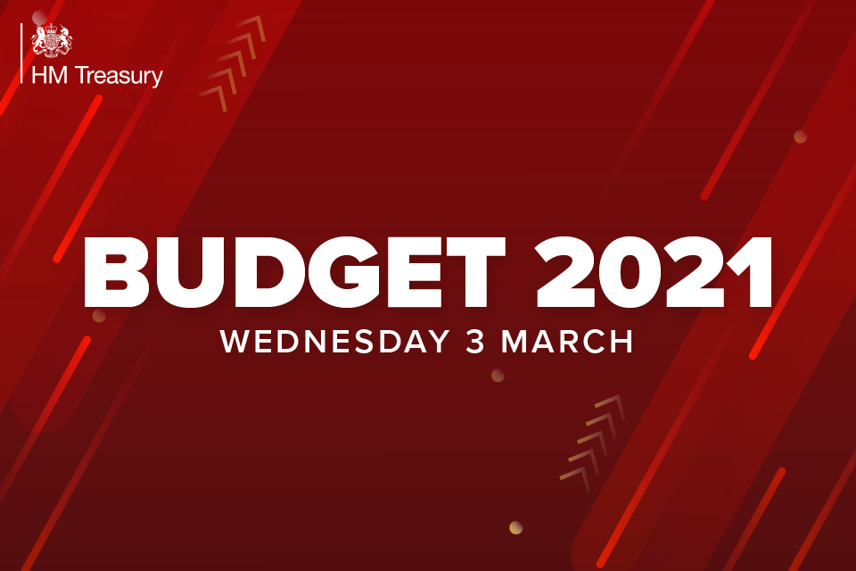 budget 2021 - photo #17