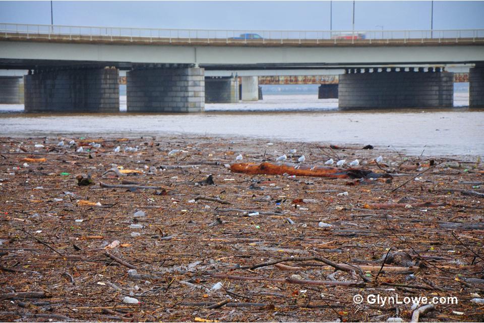 Log jam on the Potomac River