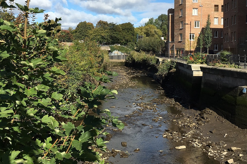 Image shows the River Ouseburn