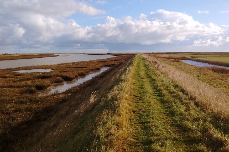 Picture shows path running along raised bank between flat lowlands with areas of water on both sides, at the end of which stands a lone walker