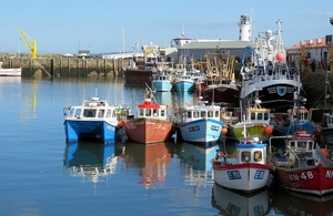 Fishing vessels in harbour.
