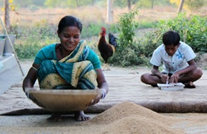 Tunu's wife sifts grain while their son studies his schoolwork. Picture: Diwakar Mani.